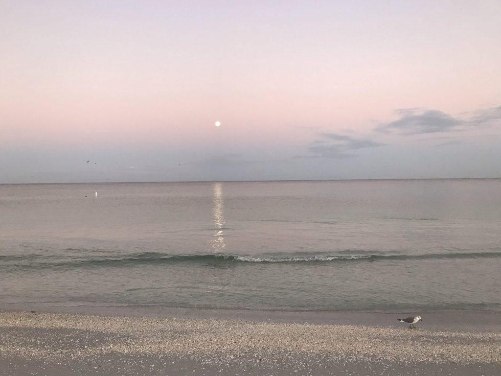 早朝のクリアウォーター。遠くに月が見えます。