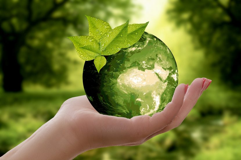 earth and hand
